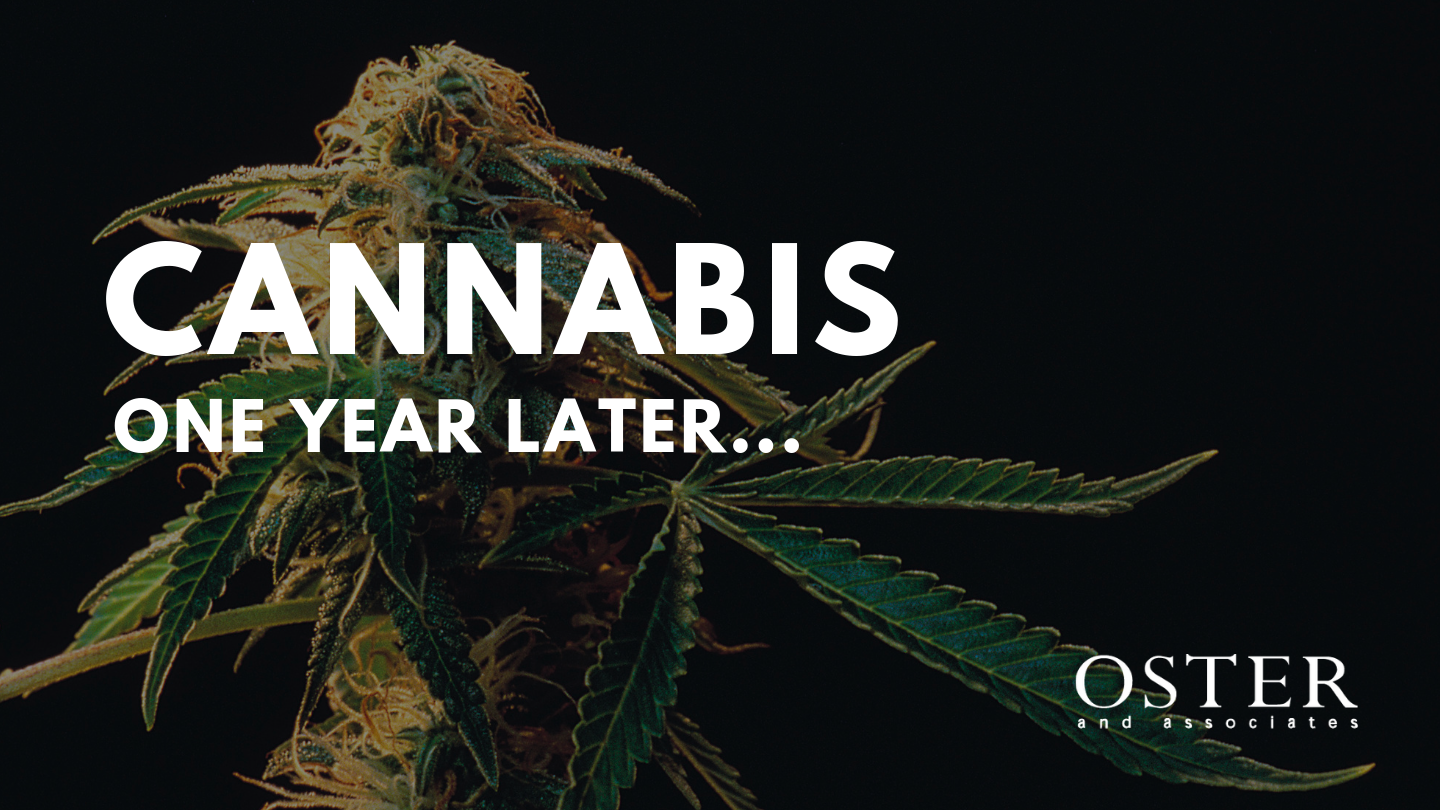 Cannabis a Year Later – What's in Store for 2019?