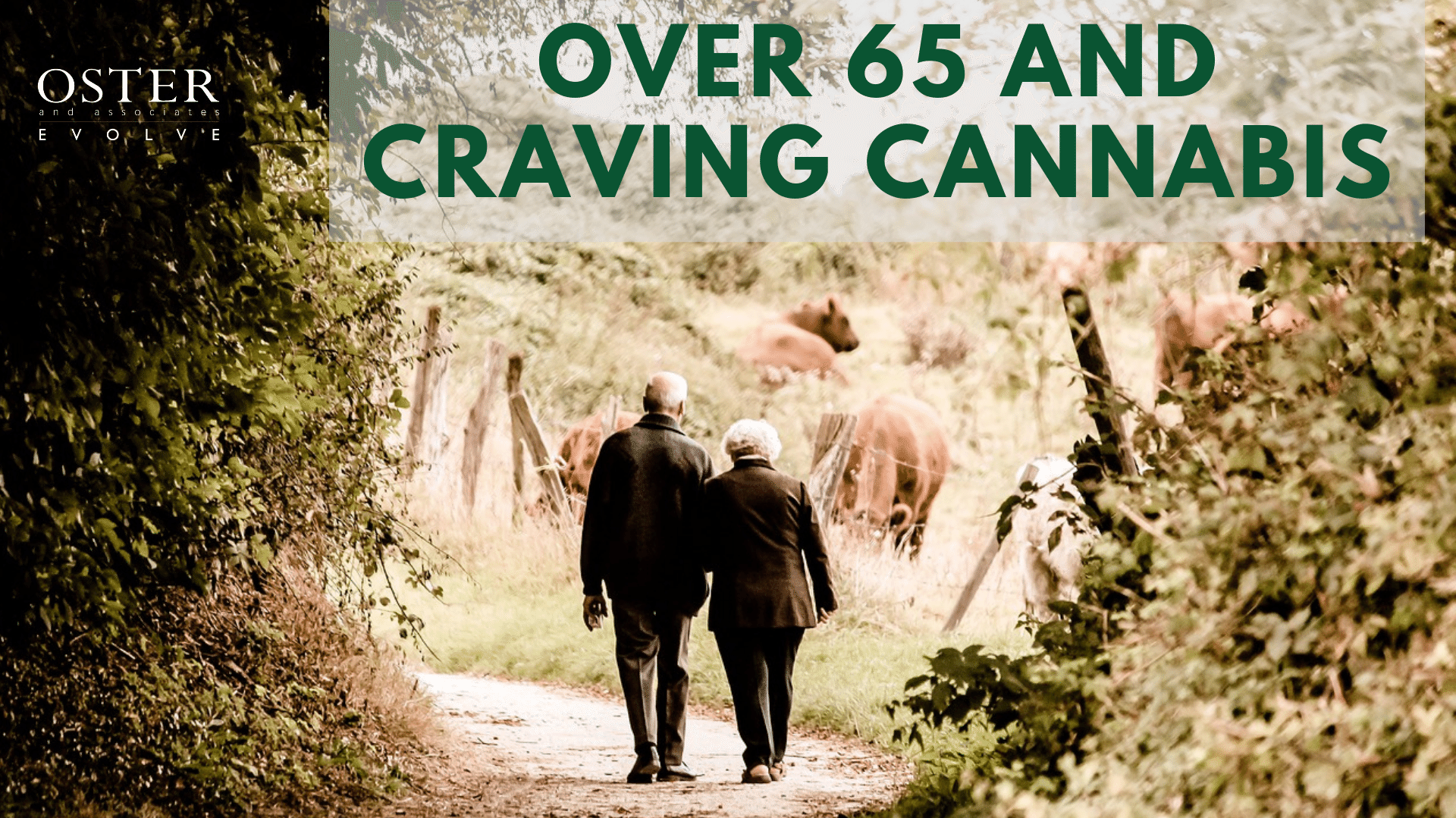 Over 65 and Craving Cannabis – A Look at a Huge Marketing Opportunity