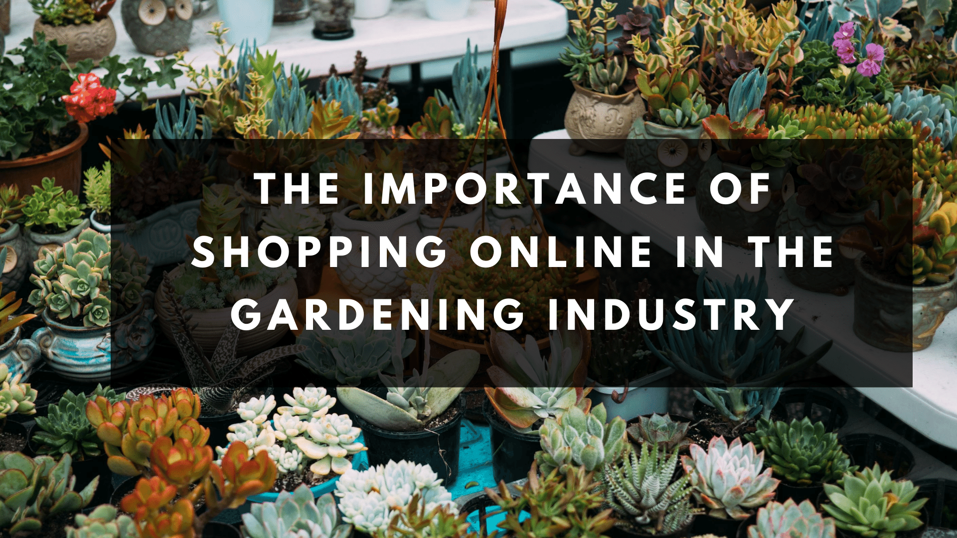 The Importance of Shopping Online in the Gardening Industry