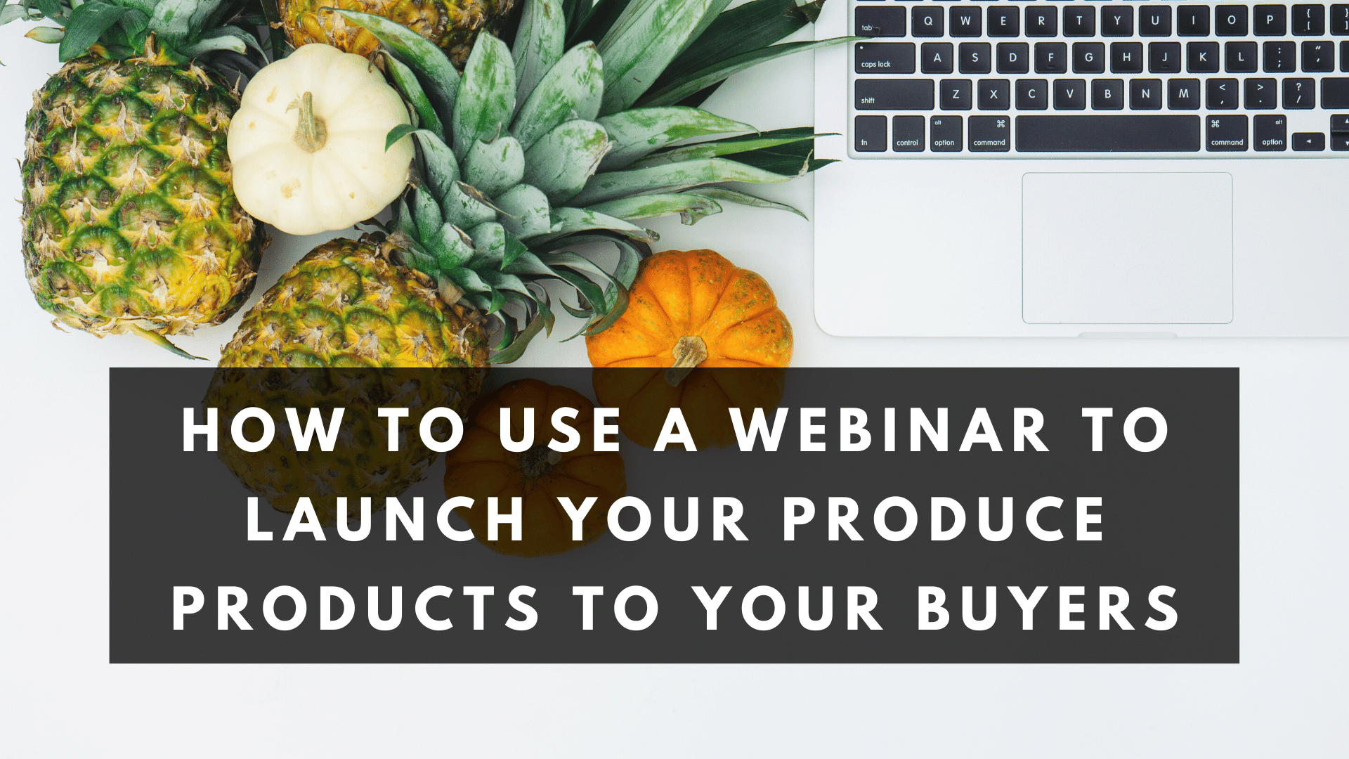 How to Use a Webinar to Launch Your Produce Products to Your Buyers