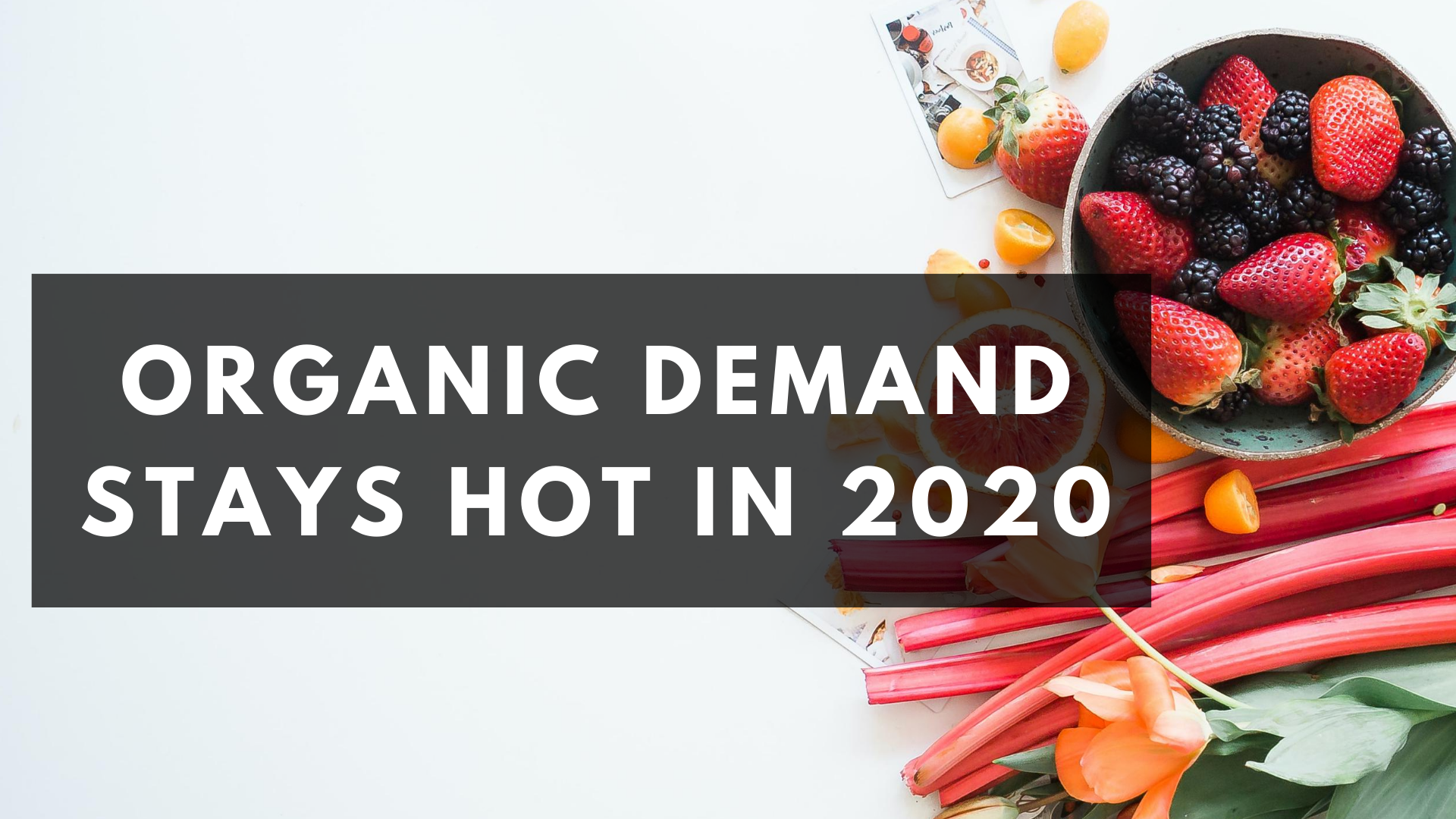 Organic Demand Stays Hot in 2020