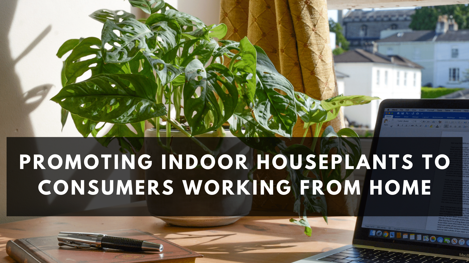 Promoting Indoor Plants to Consumers Working from Home